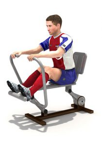 Fitness : เครื่องออกกำลังกาย กรรเชียงบก